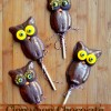 Cinnamon Chocolate Owl Pops
