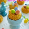 Donut Bird Nests