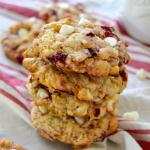 Muffin Mix Cranberry Orange Cookies & My Trip to IFBC