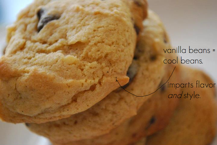 "Close-up of vanilla bean chocolate chip cookies with the caption ""vanilla beans = cool beans. imparts flavor and style."""