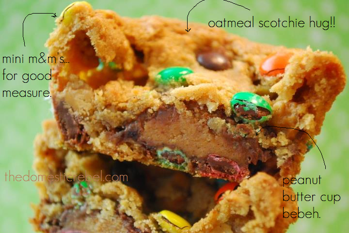 "diagram of a monster cookie cup with the captions ""mini m&ms for good measure"", ""oatmeal scotchie hug"", and ""peanut butter cup bebeh."""