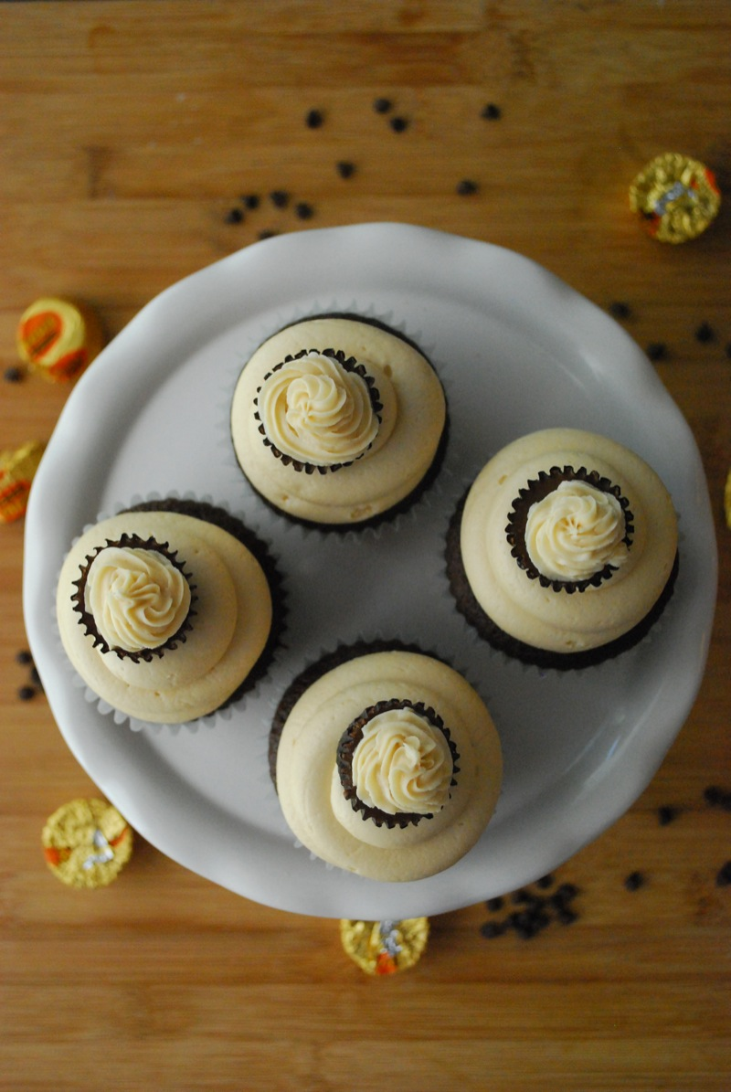 Overhead view of four chocolate peanut butter cupcakes on a white plate