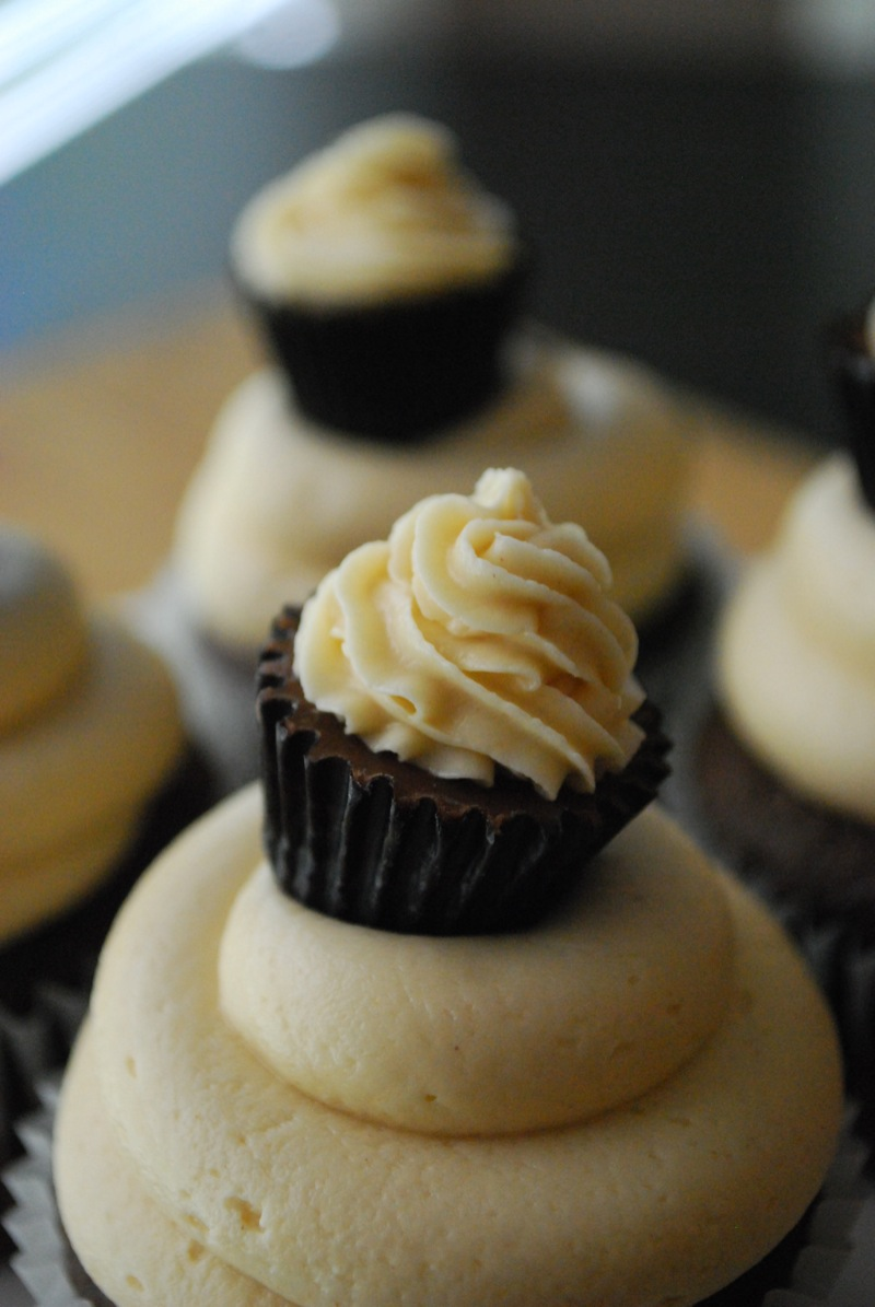 Close-up of a chocolate peanut butter cupcake with more in the background