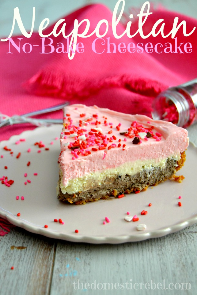 neapolitan no bake cheesecake