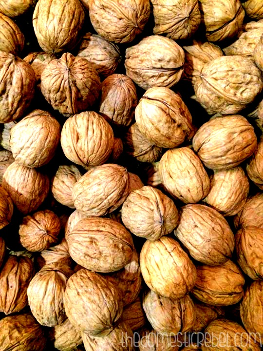 photo of in-shell walnuts