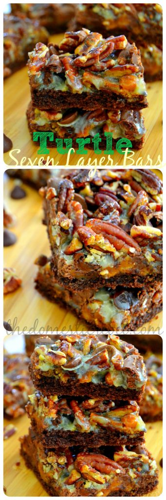 turtle seven layer bars long graphic