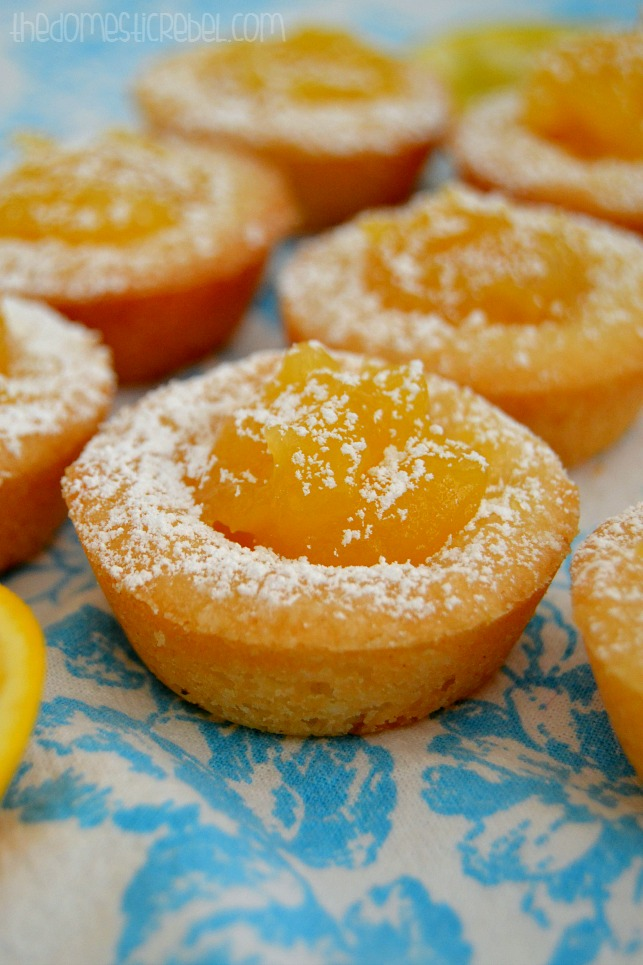 Easy Lemon Tarts arranged in rows on blue background