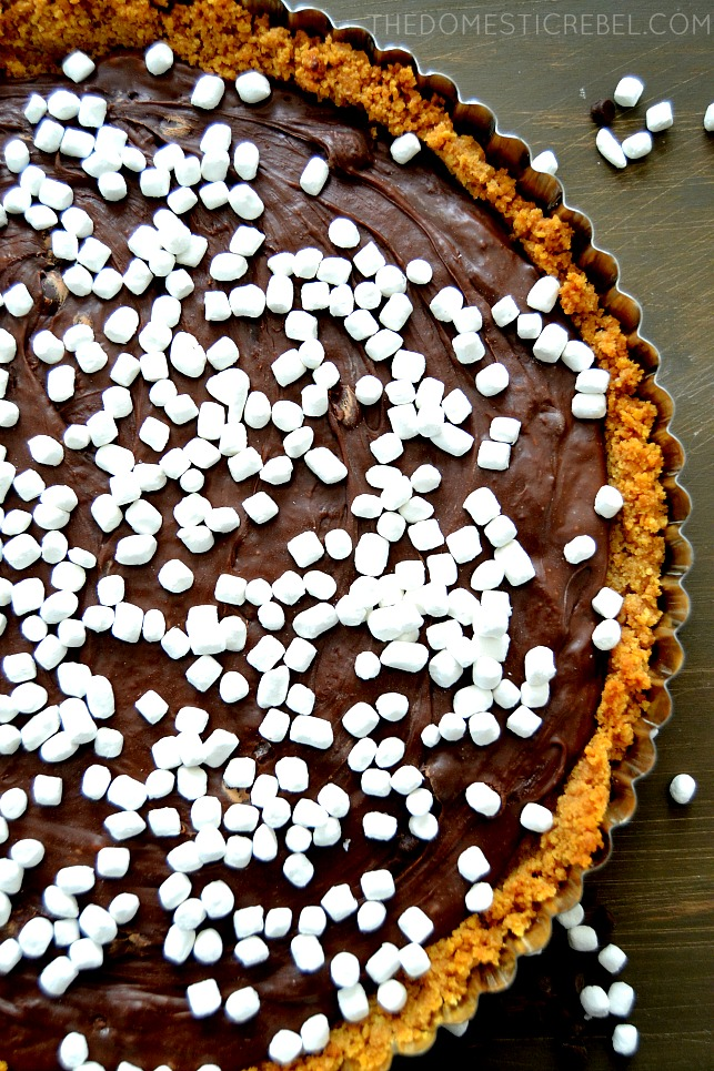 Photo of S'mores Tart on dark wood background