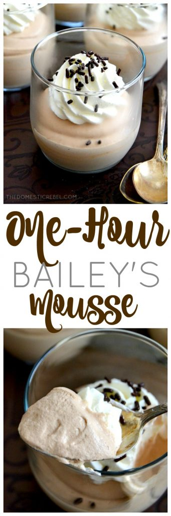 One-Hour Bailey's Mousse collage