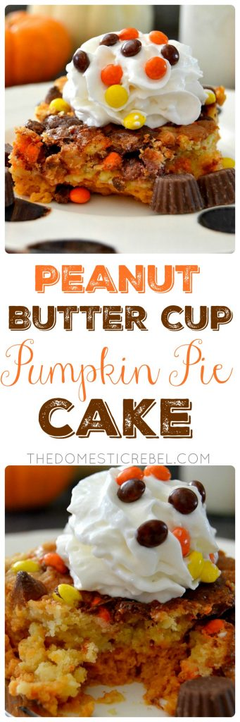 PB Cup Pumpkin Pie Cake collage