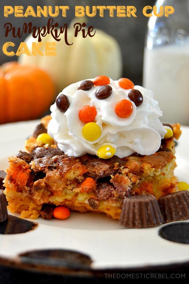 Peanut Butter Cup Pumpkin Pie Cake The Domestic Rebel