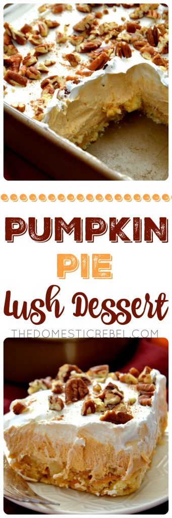 This Pumpkin Pie Lush Dessert is such a fantastic no-bake treat! Layers of pecan shortbread cookies, fluffy pumpkin pudding, creamy whipped topping and crunchy pecans complete this fabulous fall treat.