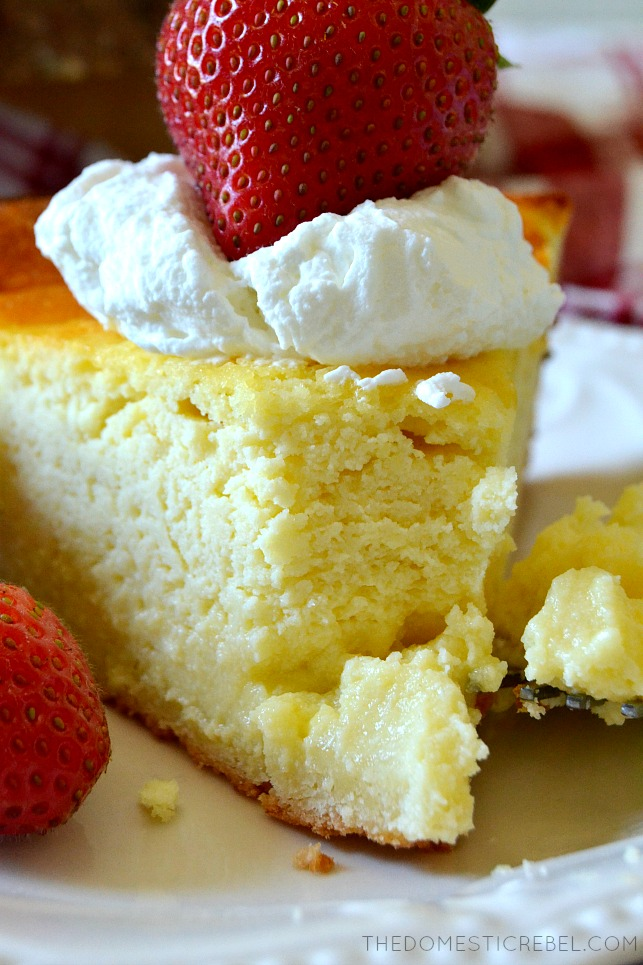 SLICE OF CHEESECAKE WITH A BITE MISSING