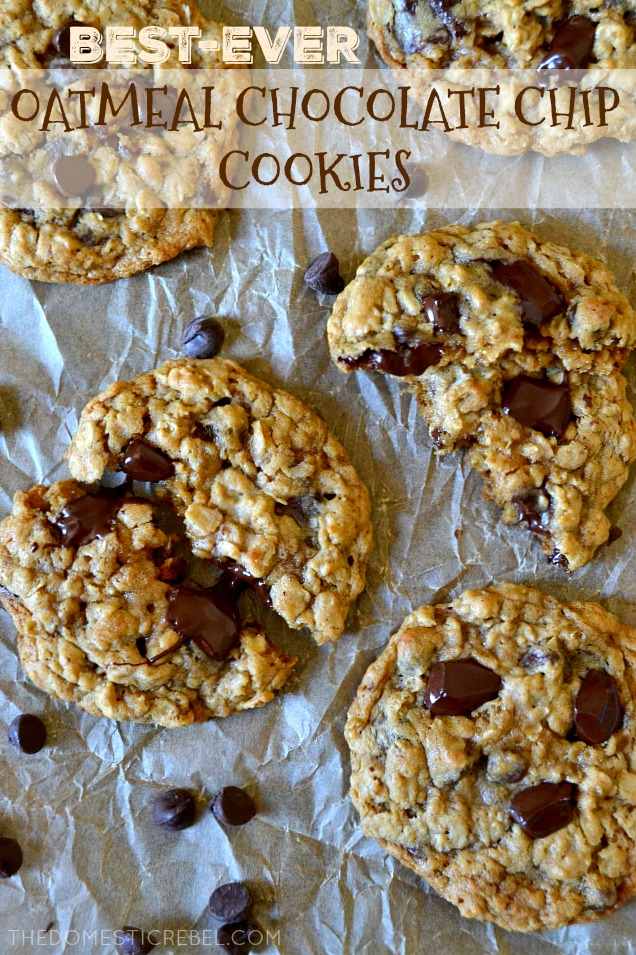These are the BEST EVER Oatmeal Chocolate Chip Cookies! Soft and chewy with crisp outer edges, they're loaded with hearty oats and gooey puddles of rich chocolate. Easy to make, makes a ton, and so ridiculously delicious!