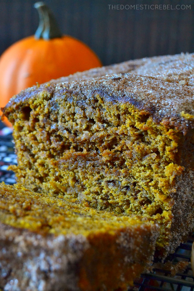 close up of the inside of the pumpkin churro loaf
