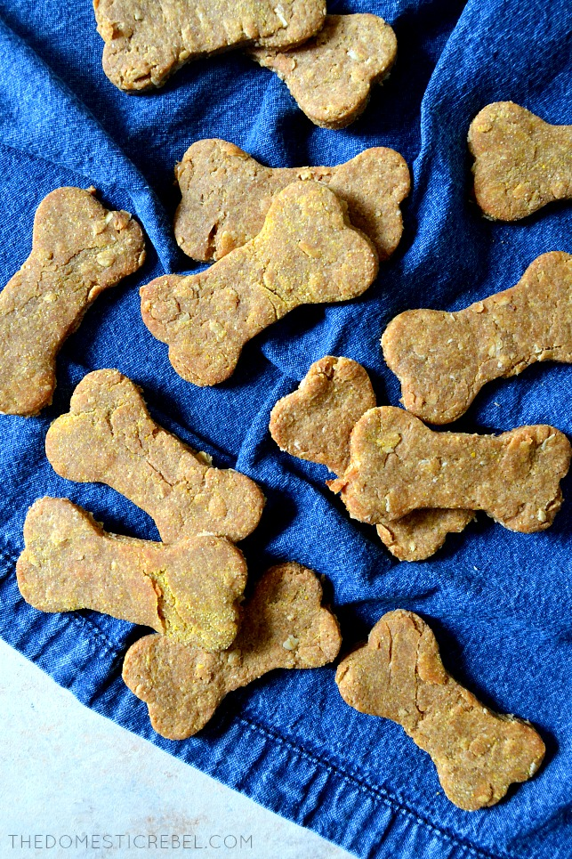 aerial view of peanut butter dog cookies arranged on blue cloth