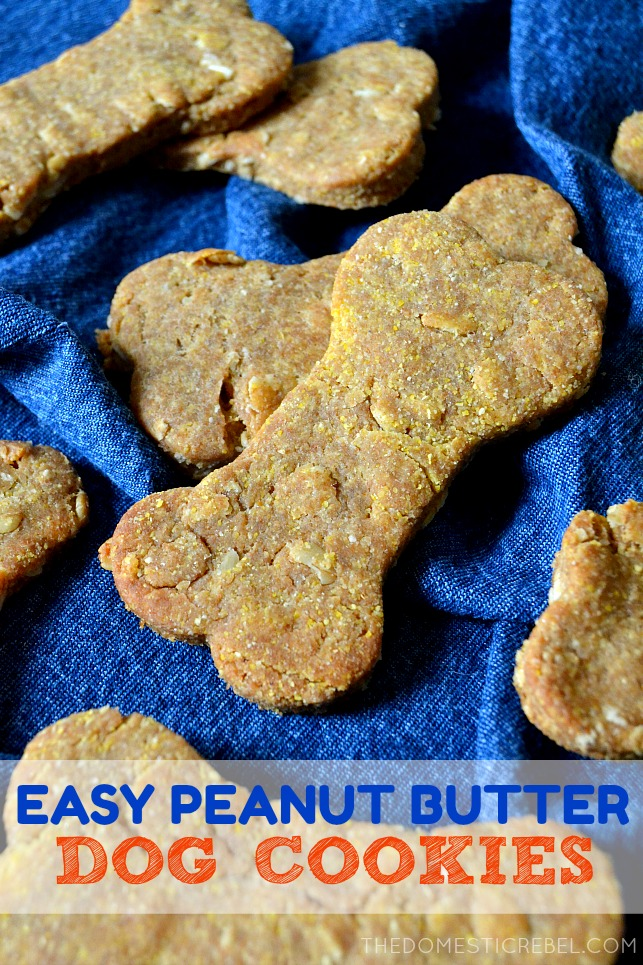 peanut butter dog cookies arranged on a blue towel