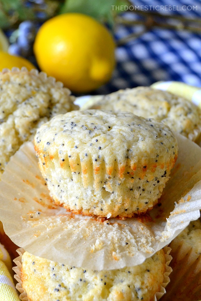 lemon poppyseed muffin unwrapped from muffin liner
