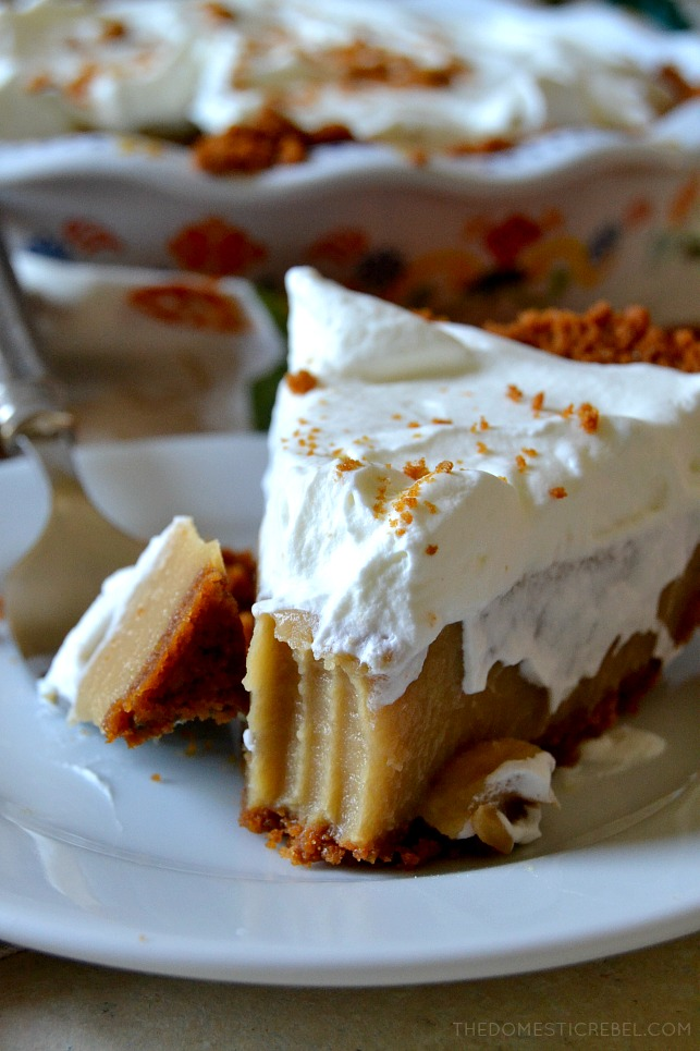 This is the BEST from-scratch Butterscotch Pudding Pie recipe! Entirely homemade, it consists of a spicy Biscoff cookie crust, a silky smooth, ultra creamy brown sugar & butterscotch pudding and a mountain of fresh whipped cream. The perfect comfort food that will be sure to please anyone!