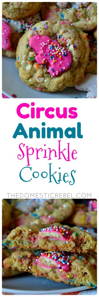 These Circus Animal Sprinkle Cookies are so fun, festive and delicious! Soft and chewy sugar pudding cookies filled with rainbow sprinkles, chopped circus animal cookies, and white chocolate chips for fantastic flavor!