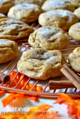 Best Ever Pumpkin Snickerdoodles (New & Improved!)