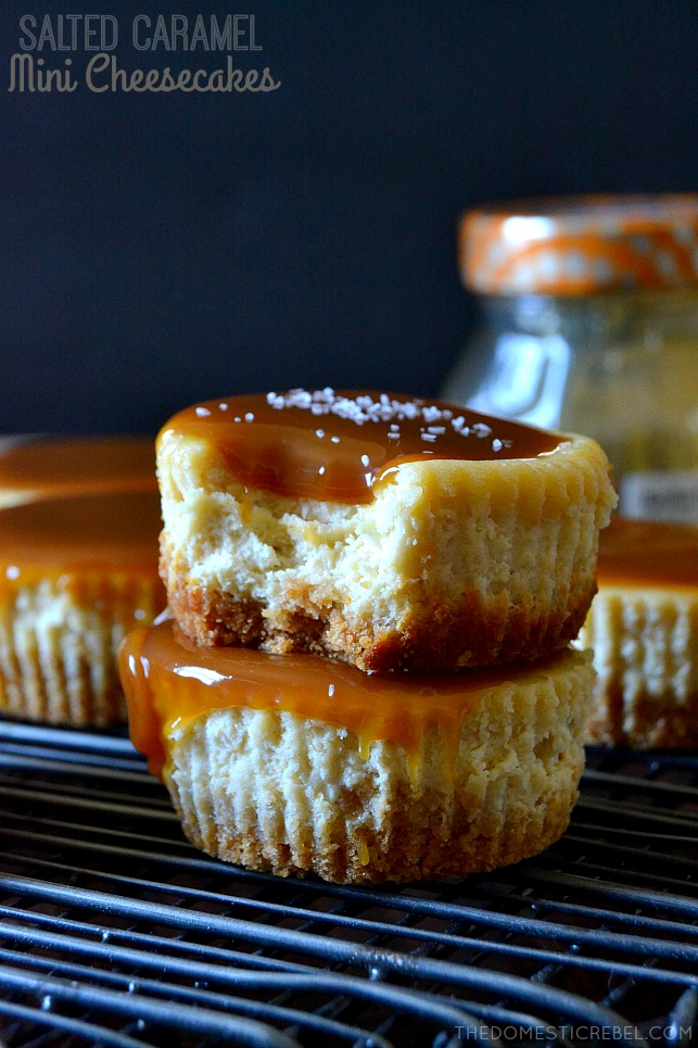 These Salted Caramel Mini Cheesecakes are to-die for! Bite-size creamy cheesecakes topped with buttery salted caramel sauce and a sprinkling of sea salt. Sweet, salty, decadent and so easy to make!
