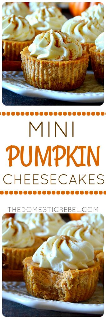 Mini Pumpkin Cheesecakes The Domestic Rebel