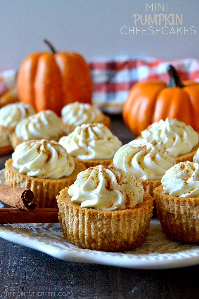 mini pumpkin cheesecakes on white plate with pumpkins and cinnamon sticks