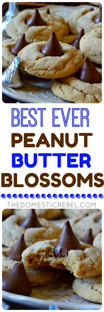 These all-butter Peanut Butter Blossom Cookies are the BEST recipe I've tried! Soft, chewy, perfectly peanut buttery with crisp outer edges and an addictive kiss of chocolate in the center! No chilling required and no shortening in sight for buttery, tender cookies!