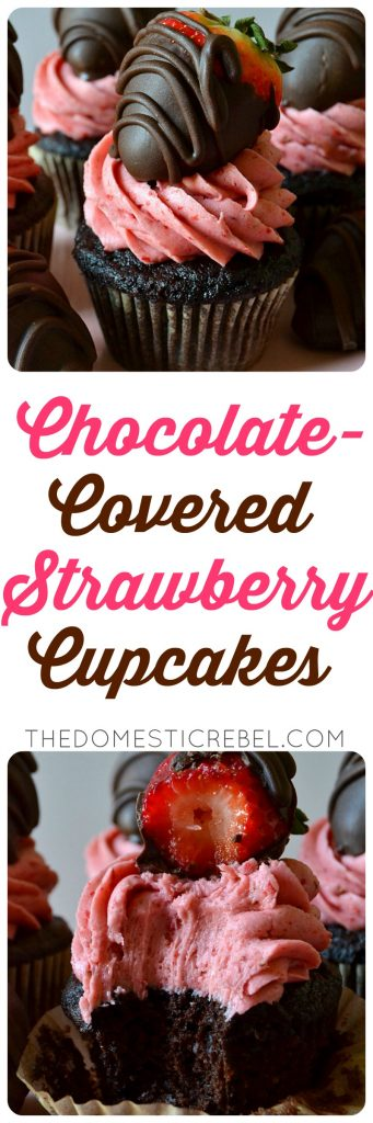 chocolate covered strawberry cupcake collage