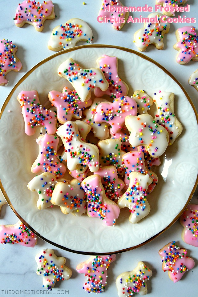 homemade frosted animal cookies arranged on white plate and marble board