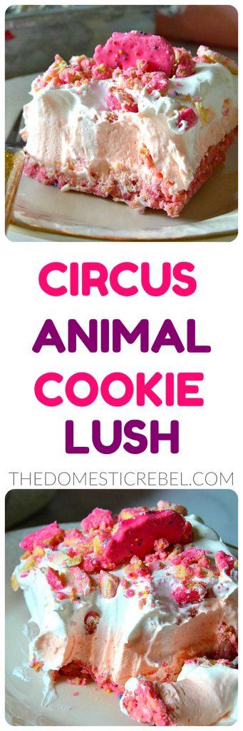 Circus Animal Cookie Lush Dessert collage