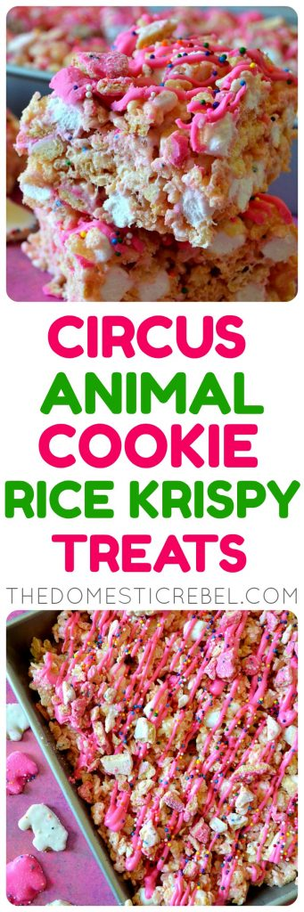 Circus Animal Cookie Rice Krispy Treats photo collage