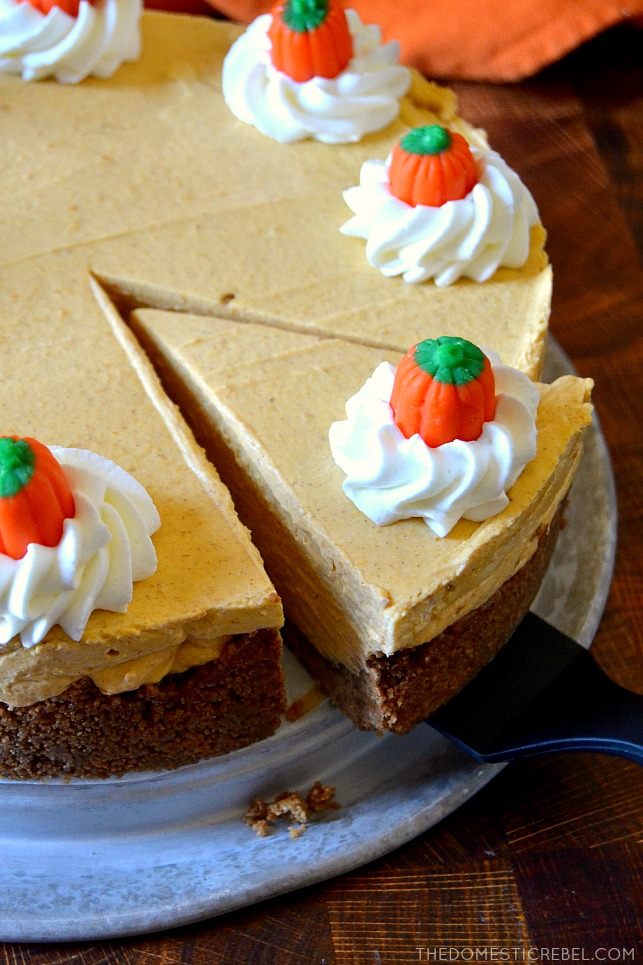 Pumpkin cheesecake slice on a spatula