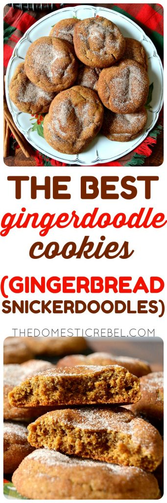 Gingerdoodle Cookies photo collage