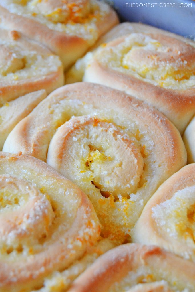 A close up of an unfrosted orange sweet roll in the pan