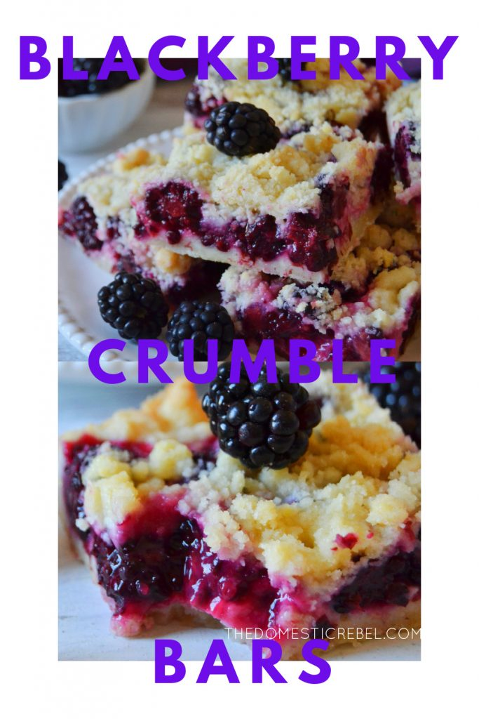 blackberry crumble bars photo collage